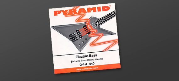 Electric Bass Stainless Steel